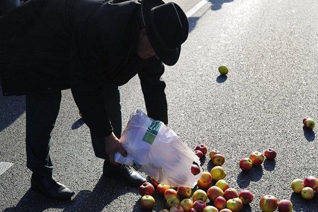 تجارت سیب لهستان بعد از سه سال بهبود نیافت
