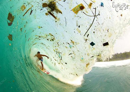 حقایق تکان دهنده درباره زباله