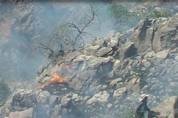 بازگشت آتش به ارتفاعات کوه ادیو در اندیکا
