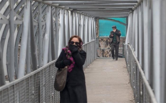 ایجاد دیده بان های محلی برای زنان در مناطق پایتخت